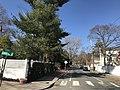 2020 Sparks Street Cambridge Massachusetts.jpg