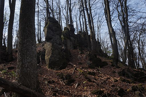21-248-2002 Анталовецькі скелі, Ужгородське лісництво