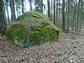 3. Šiauliškių akmuo.JPG