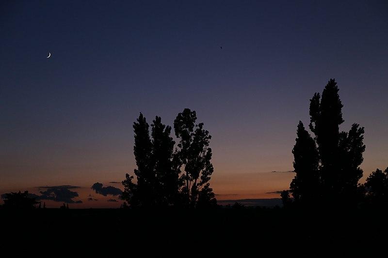 File:34290 Servian, France - panoramio (25).jpg