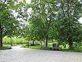 3696 20160522 садиба Кочубея Батурин.jpg