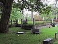 3 Cold Springs Cemetery.JPG