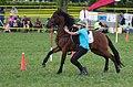 4ème manche du championnat suisse de Pony games 2013 - 25082013 - Laconnex 21.jpg
