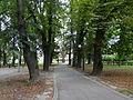 616135 pow krakowski gm Skawina Skawina park miejski 04.JPG