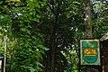 73-101-5010 парк Федьковича.jpg