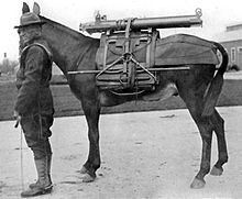 1921 photo of U.S. soldier and pack animal carrying components of a mountain howitzer.