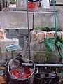 AJM 052 Greywater Cuba.JPG