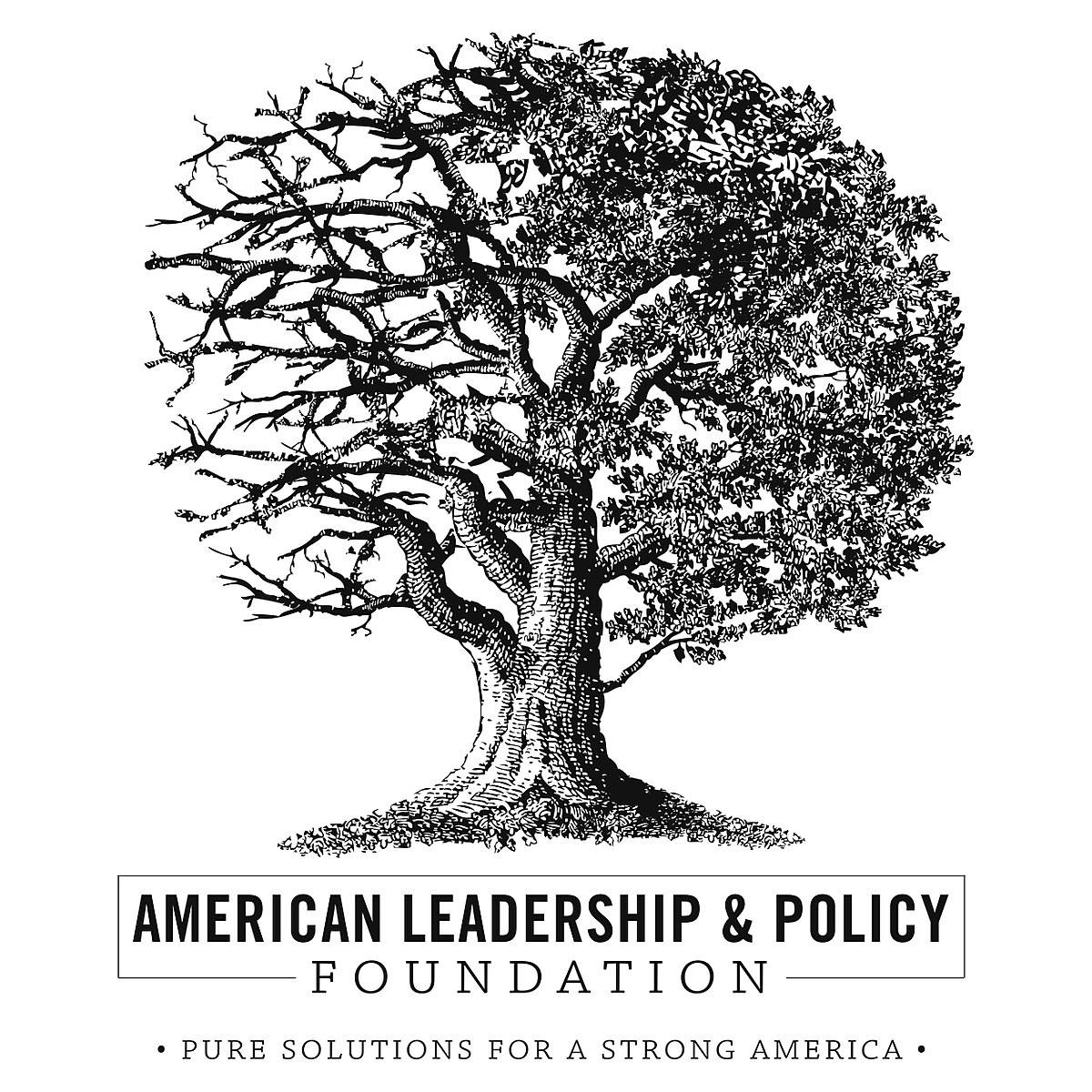 american leadership and policy foundation