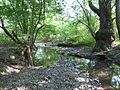 A Dera-patak Liszenkómajor alatt.jpg