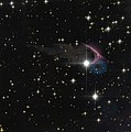 A frEGGs-cellent discovery (50121961886).jpg