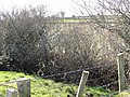 A minor tributary of the Kilkeel River viewed from the Ballinran Road - geograph.org.uk - 2321202.jpg