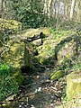A spring in The Outwood - geograph.org.uk - 383474.jpg