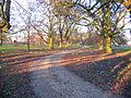 Abbey Farm drive, Swineshead, Lincs - geograph.org.uk - 132450.jpg
