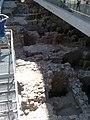 Acropolis Museum 2009 - panoramio (10).jpg