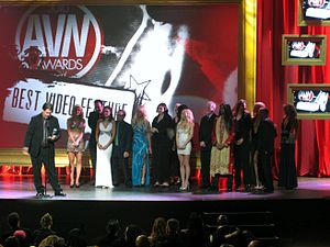 27th AVN Awards - Cast and crew of The 8th Day accepting Best Video Feature award