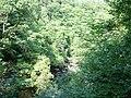 Afon Llugwy through the trees - geograph.org.uk - 212052.jpg