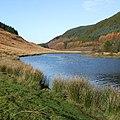 Afon Tywi feeding Llyn Brianne - geograph.org.uk - 1041564.jpg