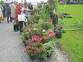 AgroBalt 2012 - gėlių augintojų turgelis.JPG