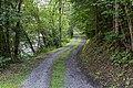 Albeck Untere Schattseite Fahrweg an der Gurk 04082019 6881.jpg