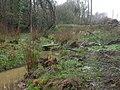 Alderholt, stream - geograph.org.uk - 1245669.jpg