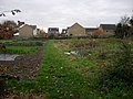 Allotments on Toft Lane - geograph.org.uk - 1046882.jpg