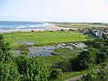 Alnmouth, Northumberland, UK - panoramio.jpg