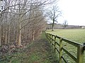 Alongside the paddock - geograph.org.uk - 1742167.jpg