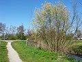 Amstelveen, Netherlands - panoramio (68).jpg