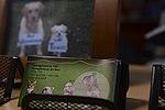 Animal House Saber Nations Veterinary Clinic 140225-F-YU668-037.jpg