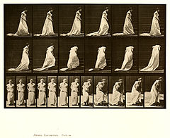 Animal locomotion. Plate 100 (Boston Public Library).jpg
