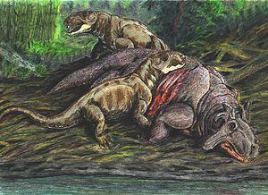 Anteosaur - Two Archaeosyodon feeding on a Estemmenosuchus