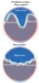 Arctic Oscillation fr.png