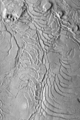 Arcuate fractures on the southeastern edge of Elysium Planitia.png