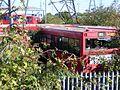 Arriva bus graveyard, N18 dennis dart S169 JUA at rest. (8149133455).jpg