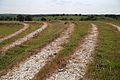 Art earthwork landscape sculpture Woodland Trust Theydon Bois Essex 01.JPG