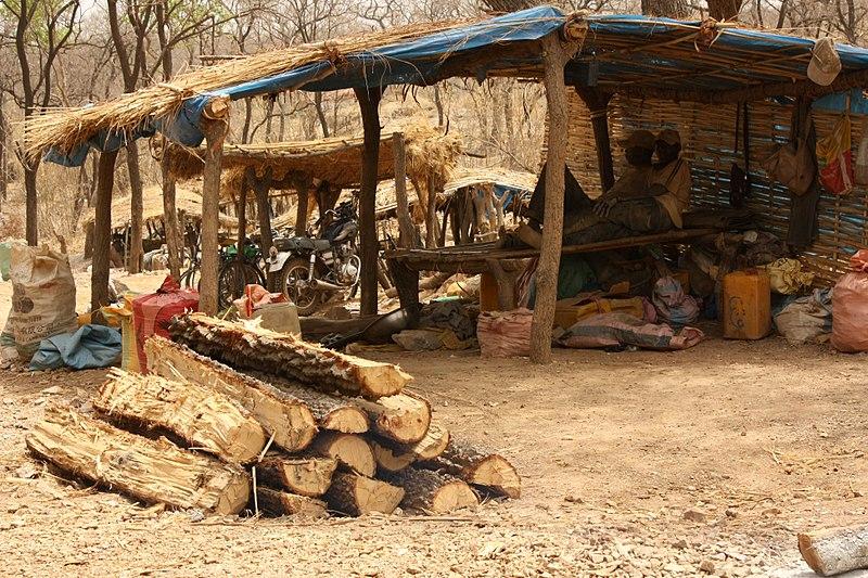 어린이 광부 세네갈의  텐코토 금 찾는 광산