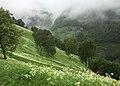Auf dem Weg zum Schloss Juval - panoramio.jpg