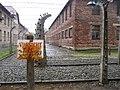 Auschwitz II-Birkenau 4.jpg
