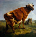 Balthasar Paul Ommeganck - A cow.PNG