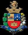 Bandeira de Tatuí.png