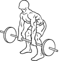 Barbell-rear-delt-row-1.png