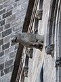 Barcelona Cathedral Gargoyle 08.jpg