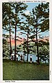 """Bastrop TX - View of Park Lake from Cabins in """"Lost Pine Forest."""" (NBY 431324).jpg"""