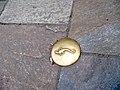 Beauvais salamandre (plot de laiton sur le sol).jpg