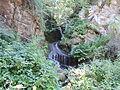 Belasitsa Nature Park 06.JPG