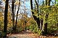 Bellevue Botanical Garden 10.jpg
