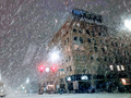 Bellingham Washington Downtown - SnowMageddon 2019.png