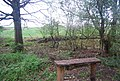 Bench by the Downs Link - geograph.org.uk - 1876116.jpg