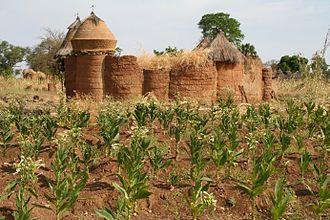 Somba people - A Somba castle-house.
