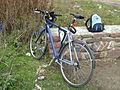 BicicletaBH.jpg